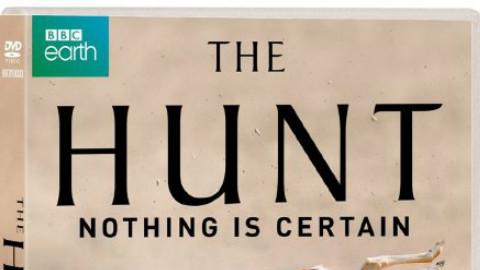 【2015BBC纪录片/英国】猎捕(The Hunt)第一季 01【字幕组ZiMuZu】