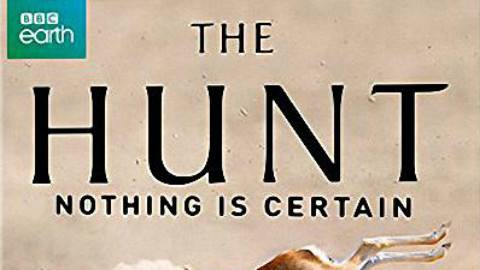 【2015BBC纪录片/英国】猎捕(The Hunt)第一季 05【字幕组ZiMuZu】