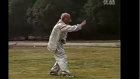 看九十多岁的老拳师翻跟斗和单手俯卧撑