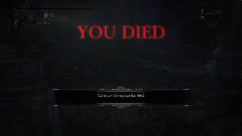 Bloodborne Double Chikage PvP