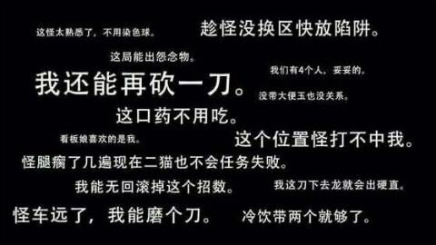 【怪猎OL】双斩少女与裸奔大汉与电剧