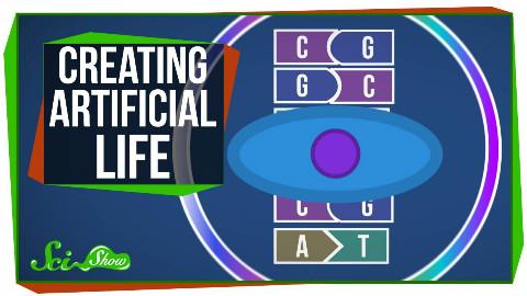 【SciShow科学秀】科学家已经创造出人造生命 @柚子木字幕组