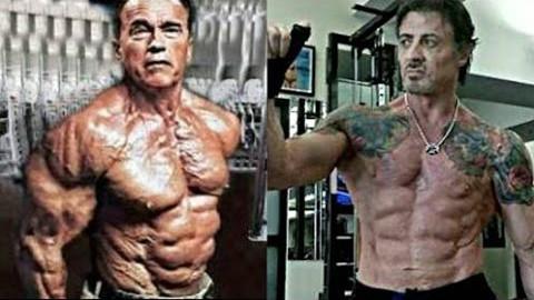 【现在健身还不算晚】史泰龙&施瓦辛格--在68岁时的健身训练剪辑