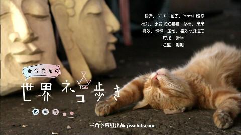 【三角字幕组】岩合光昭の猫步走世界~巴厘岛~