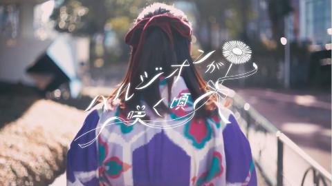 乃木坂46 『ハルジオンが咲く頃』