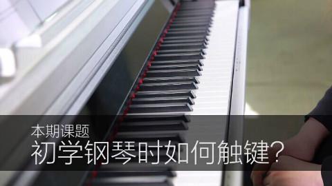 【音乐小课堂】《初学钢琴时如何触键》      钢琴初级教学系列