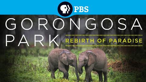 【PBS纪录片】戈龙戈萨国家公园.重生的天堂.全六集.720P.3E帝国字幕组-中英特效字幕