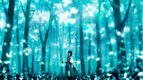 光与影的轮舞【歌声与月光】第二期《不归之森》