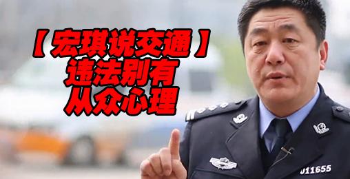 违法别有从众心理【宏琪说交通】