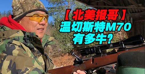 【北美报哥】看温切斯特M70猎枪有多牛叉