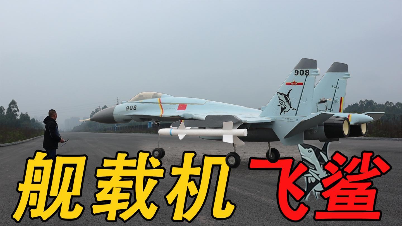 可以航母起降的: 【歼15航模舰载机】飞出眼镜蛇机动, 直冲云霄!