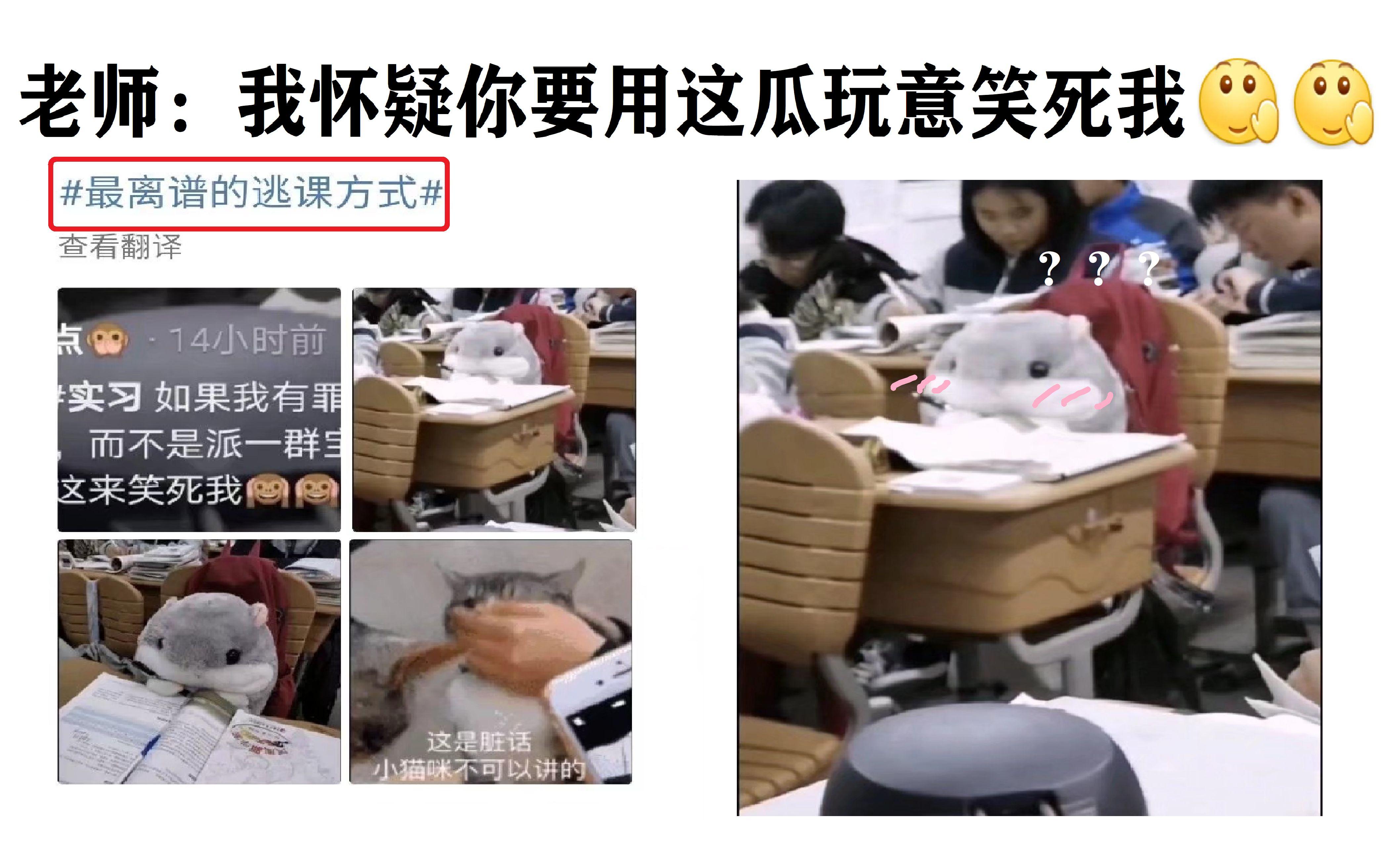 老师: 如果我有罪, 请不要用这瓜玩意笑死我(`・ω・´)(爆笑的沙雕图合集)