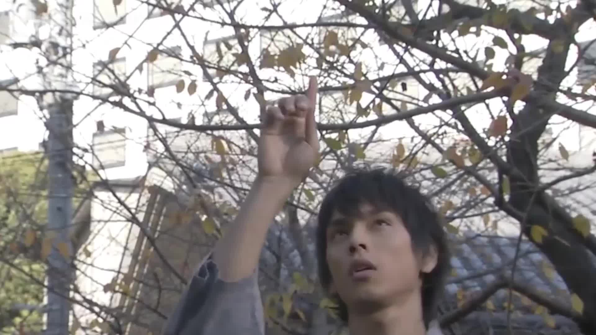 假面骑士Kabuto全骑士介绍: 我乃行天之道, 总司一切的男人!