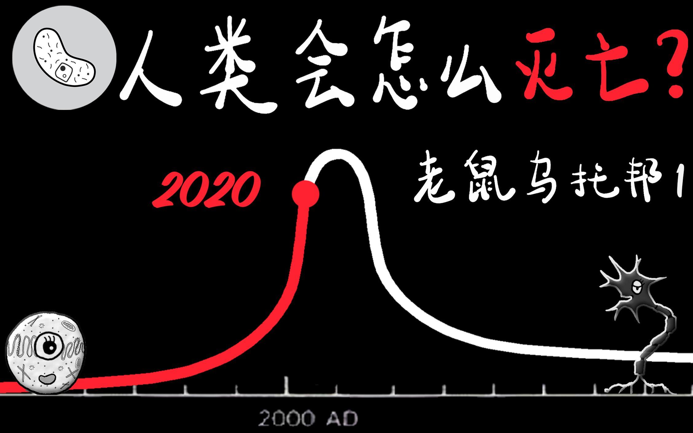 【人类注定要灭亡? 】老鼠乌托邦预示了什么? 25号宇宙实验编年史! 预测人类的未来走势? 高密度带来的社会问题!