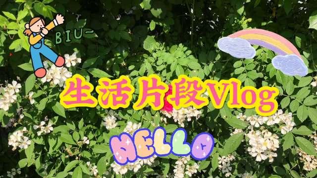 武汉vlog