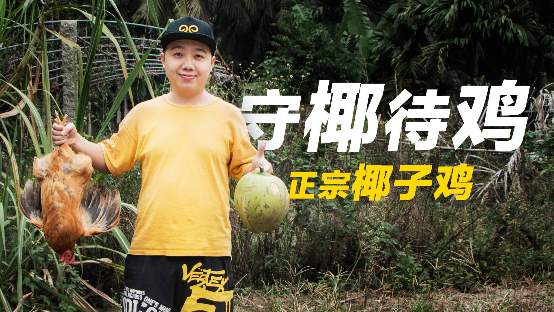 椰鸡相争小伙得利,融为一锅椰子鸡汤, 配上海南独特蘸料,真香!