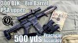 psa 300blk upper (8in barrel),the  dirt squirrel  to 500yds: practical accuracy
