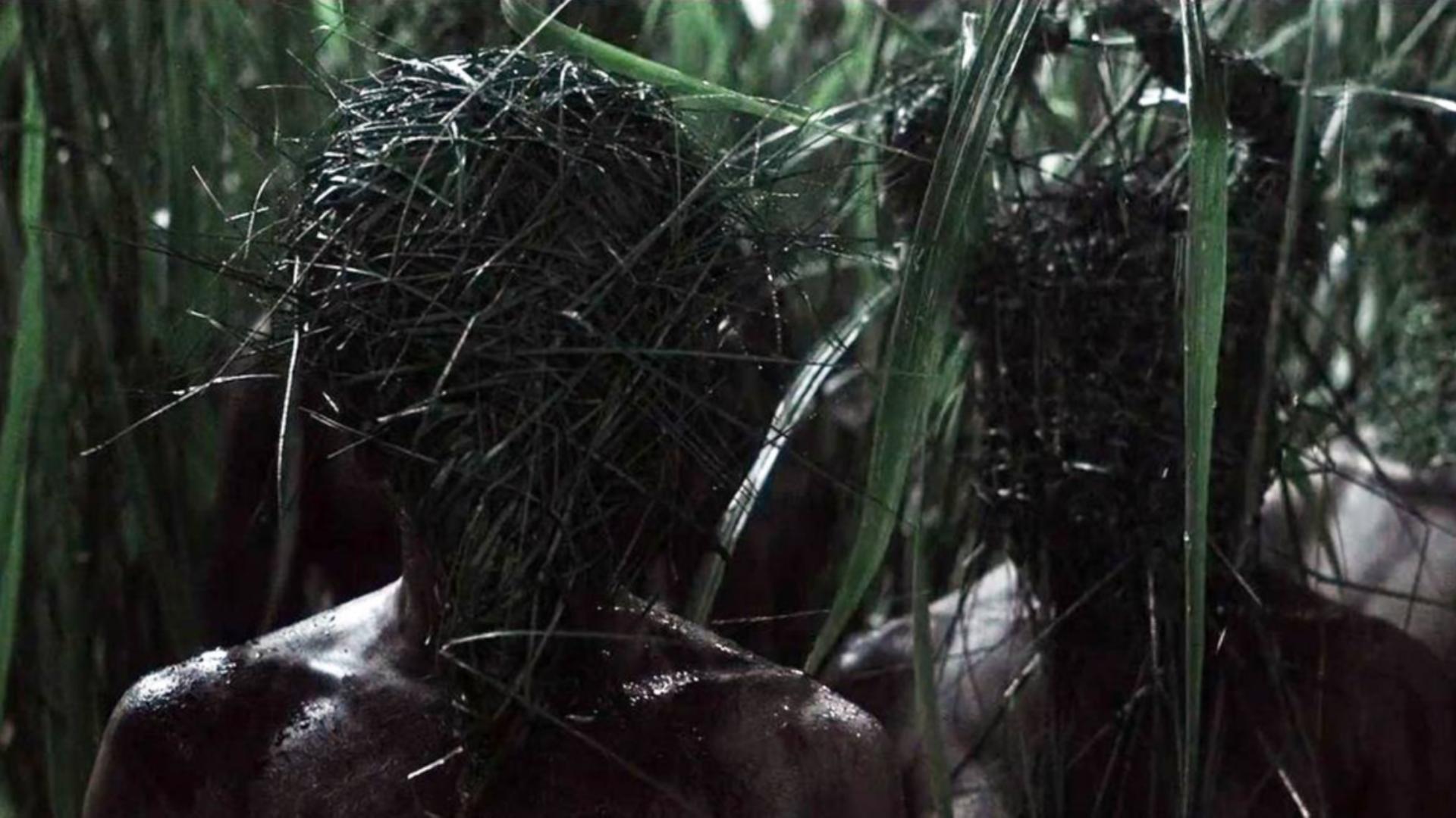 一部被低估了的恐怖悬疑片,《高草丛中》茂密草丛开启死亡循环!