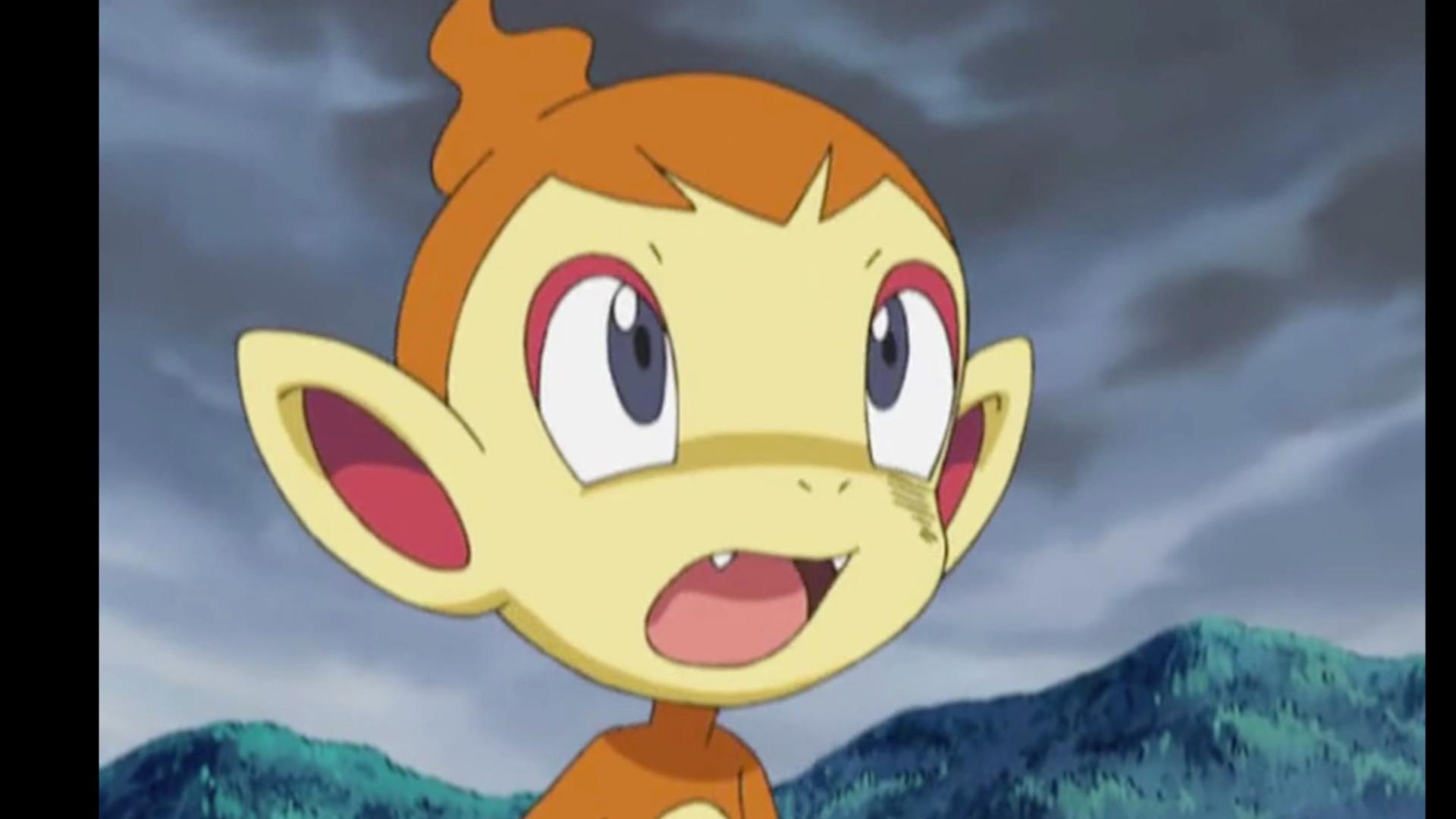 小智的最强二手宝可梦小火焰猴上篇