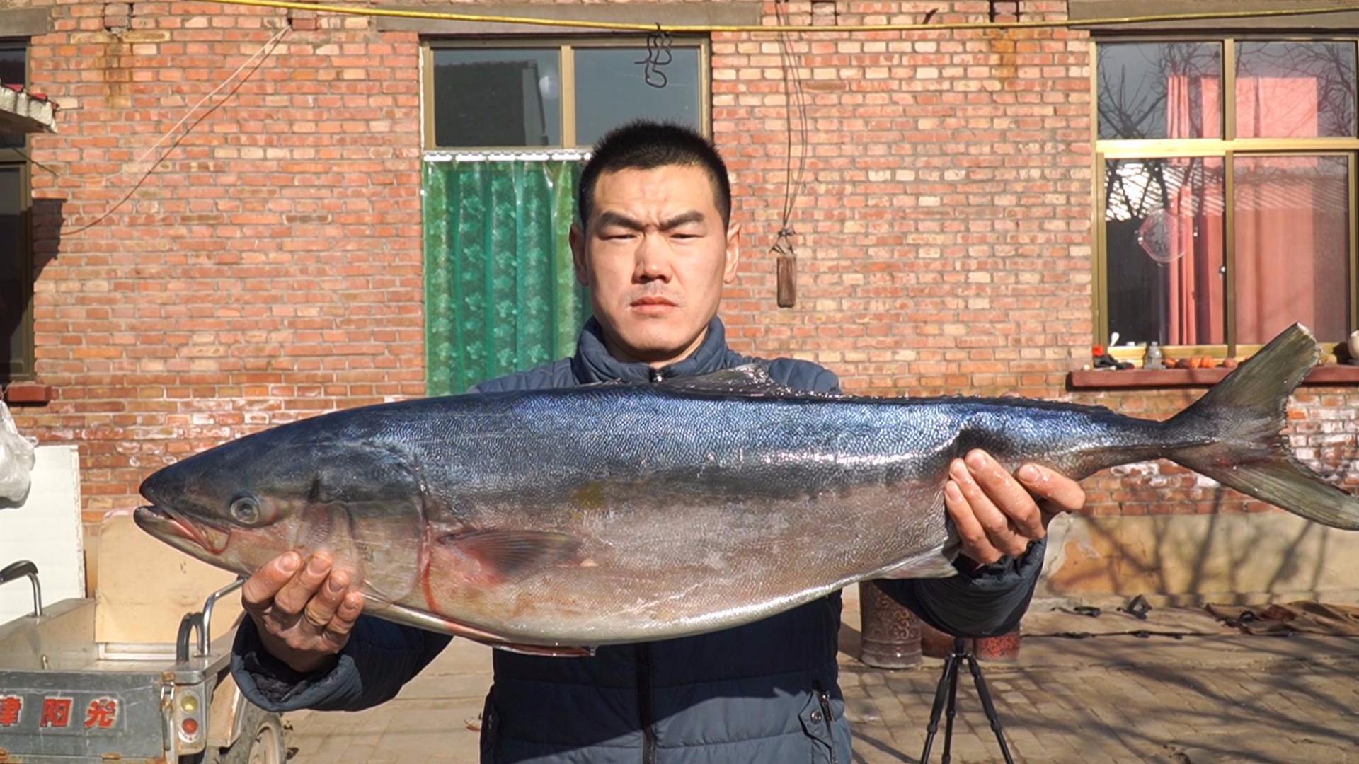 阿远花210块买了条20斤的鲅鱼,茄汁炖2小时,肉厚入味儿,过瘾