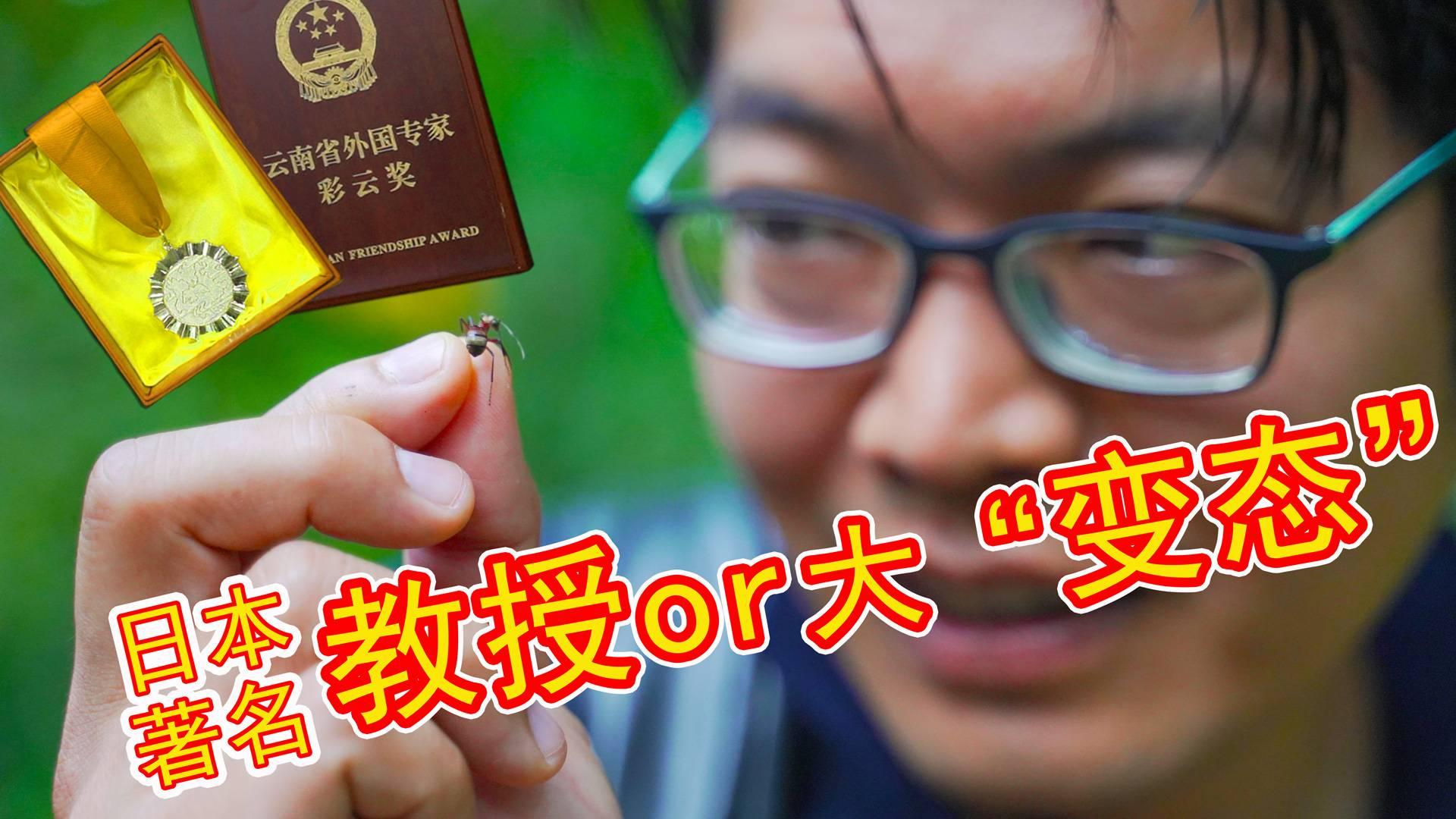 """获得云南省外国专家奖的日本昆虫教授竟然自称是""""大变态""""!"""