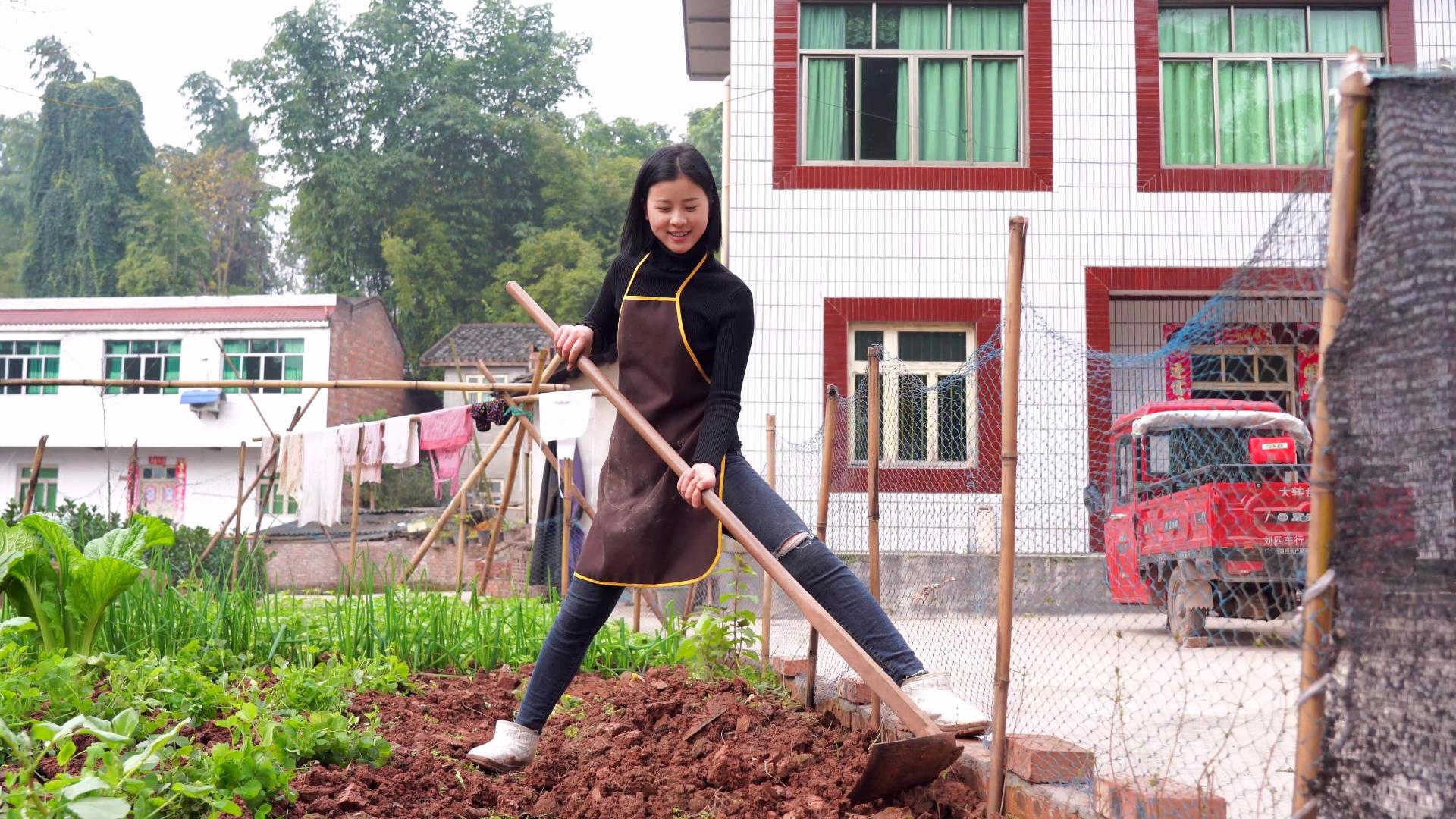 漆二娃vlog:之前华农哥帮忙翻地种的花枯萎了,现在重新撒种