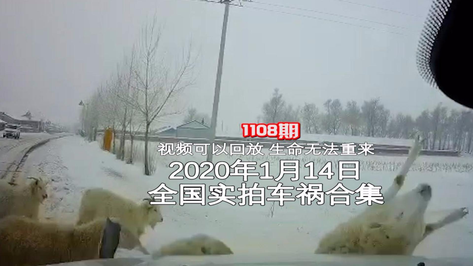 1108期:大雾天逆向超车险撞上迎面而来的大货车【20200114全国车祸合集】