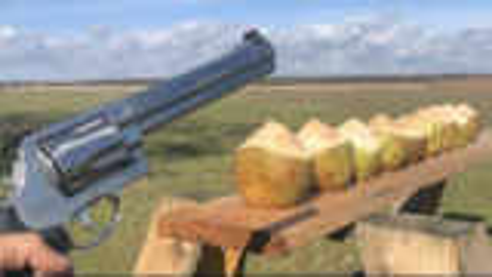 [Edwin Sarkissian].500马格南 vs 椰子
