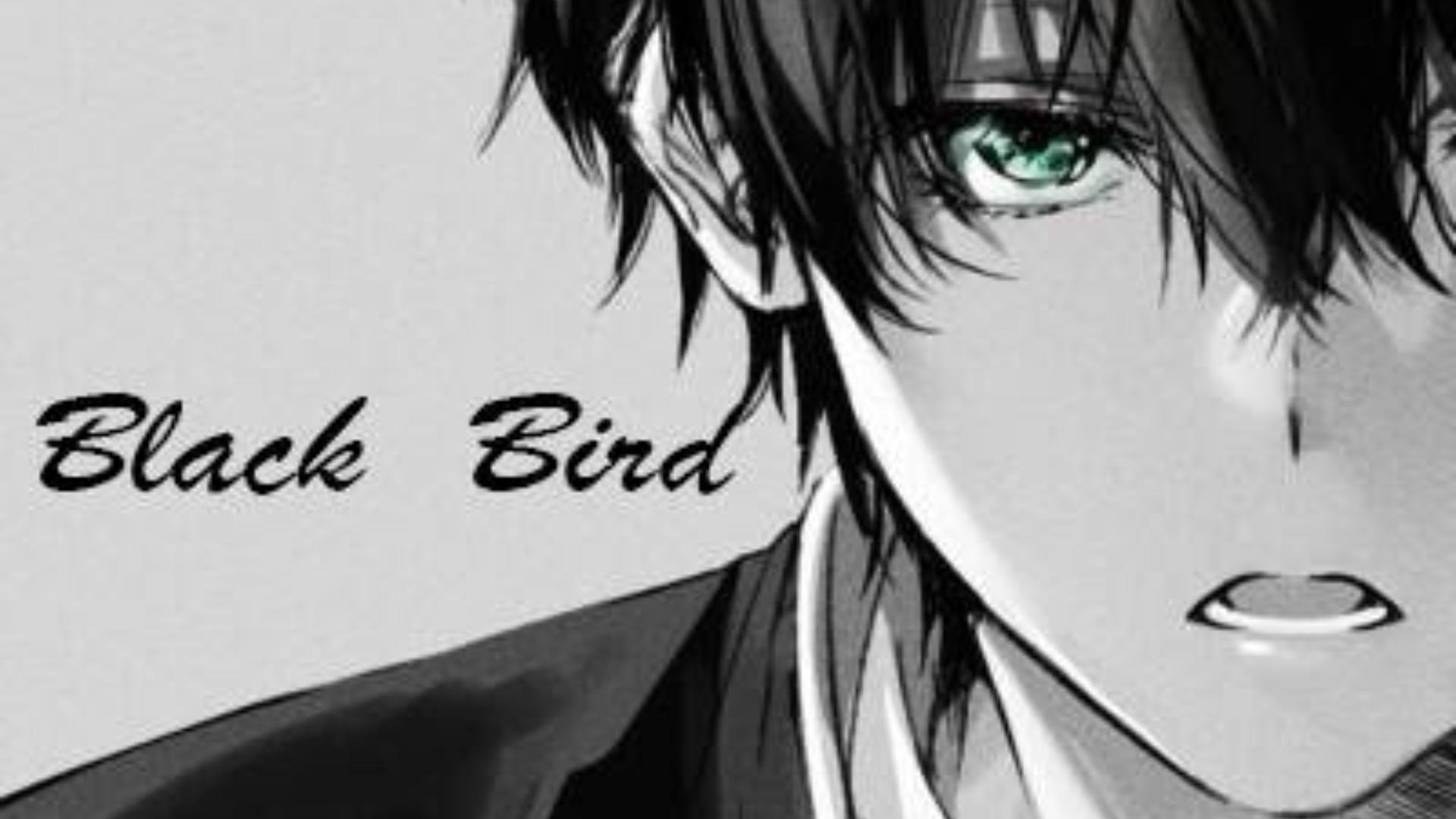 【Black BirdX折木奉太郎】不是每个人的生活,都要多彩绚烂。