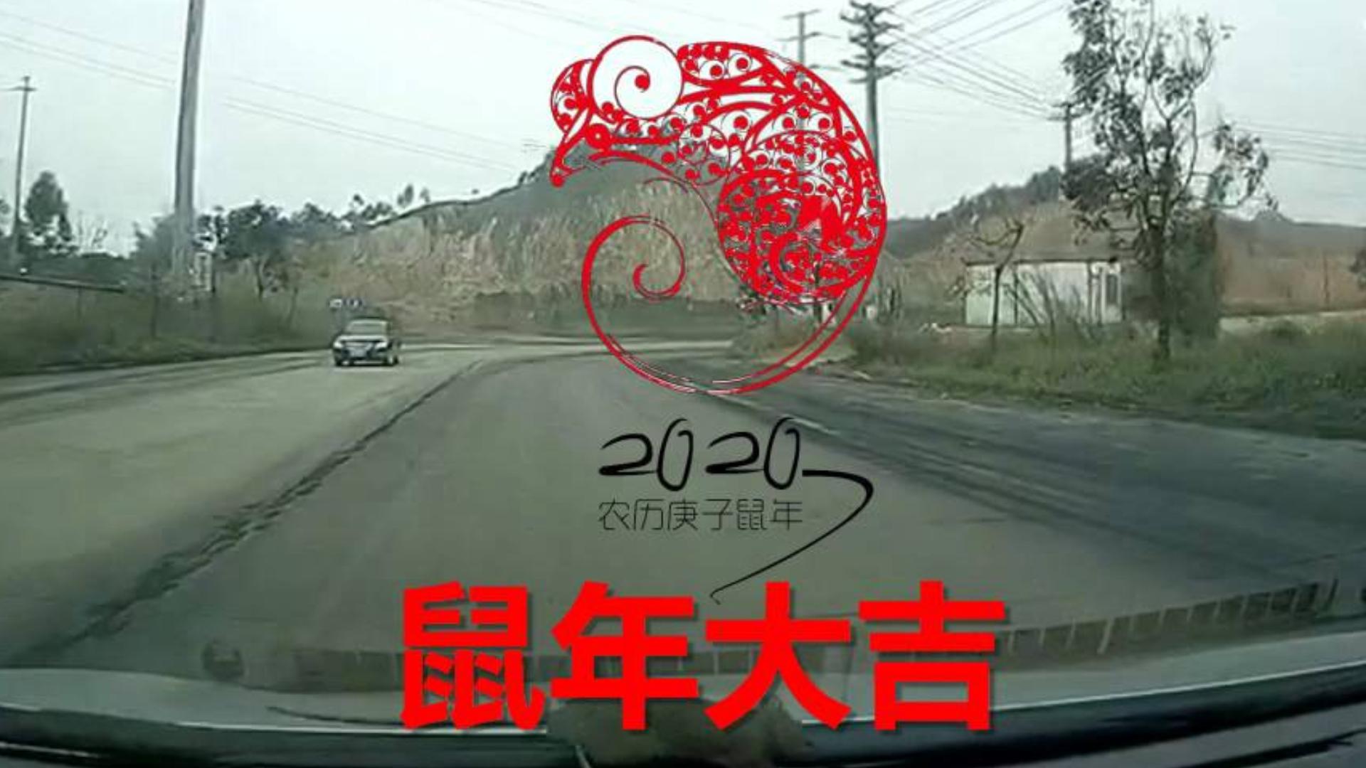 交通事故2020:十二生肖(伪)