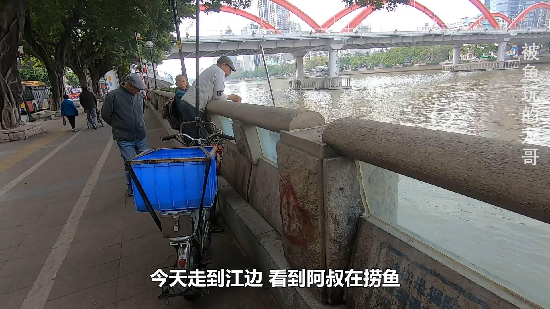广州珠江边大叔们捞鱼,每天都搞到好几斤大货,这鱼和龟能吃吗?