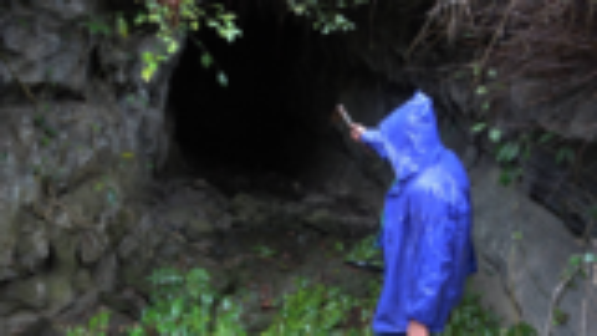 小明冒雨进山寻宝,在村民所说的地主洞内发现不对劲,撒腿就跑