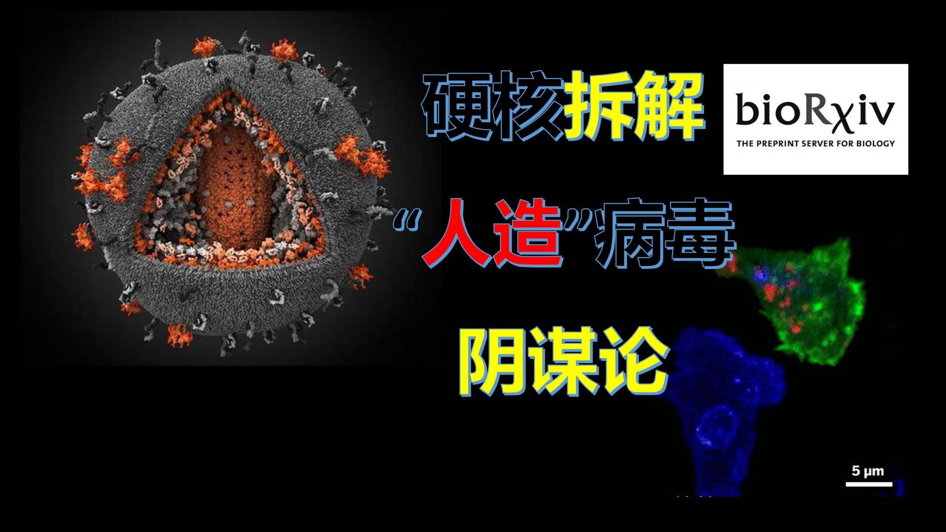 """破解谣言:新冠病毒是人造的?硬核拆解""""人造病毒""""的阴谋论!"""