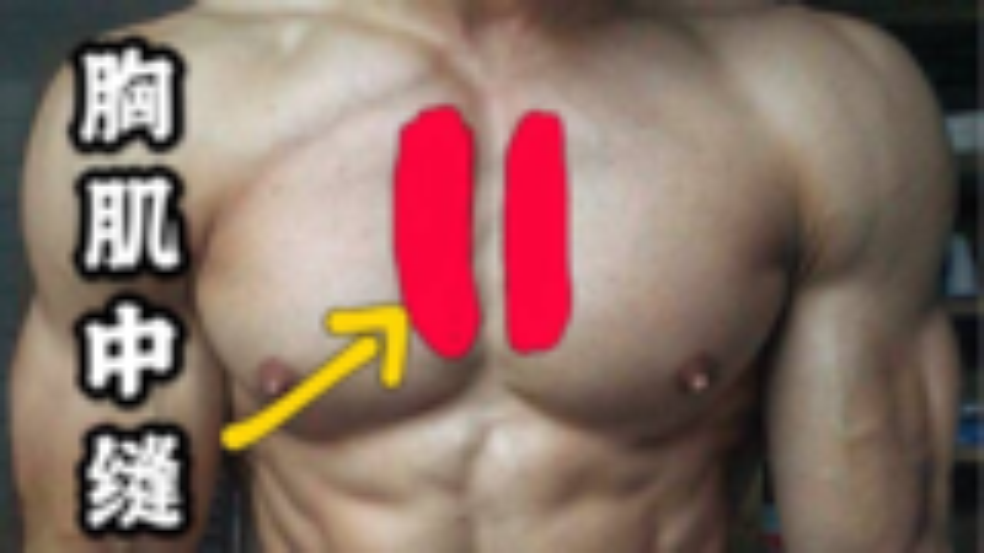 胸肌中缝太薄怎么办?这1招可以加强胸中缝,让你的胸肌更加饱满