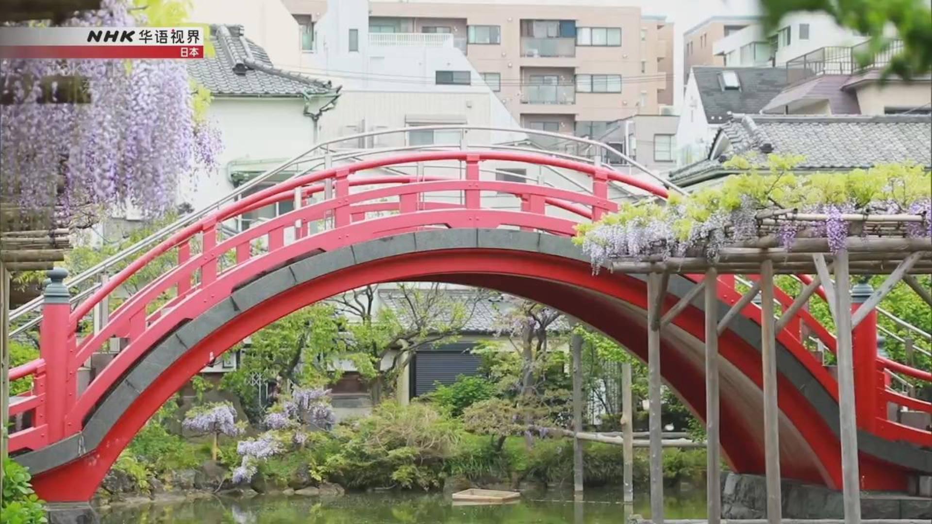 纪录片.NHK.东京视角2020.迷人朴实的龟户[片头]
