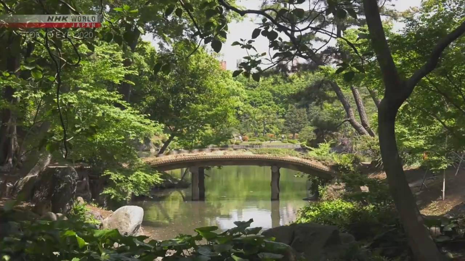 纪录片.NHK.东京视角2020.东京的美丽庭园[片头]