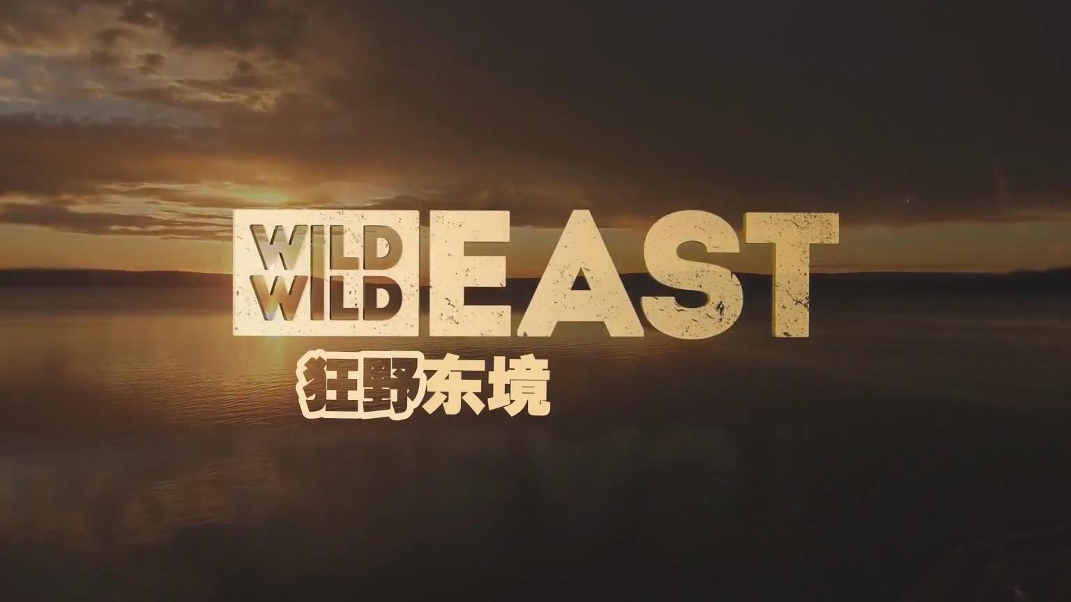 【纪录片】狂野东境 甲壳动物【双语特效字幕】【纪录片之家爱自然】
