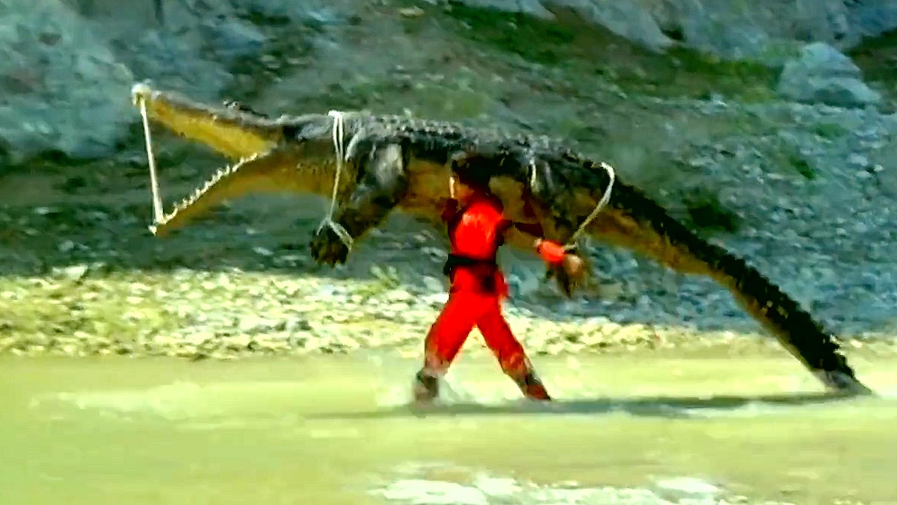 科幻片:爷爷想吃一条鱼,结果诚实的孙子,帮他抓来一条鳄鱼!