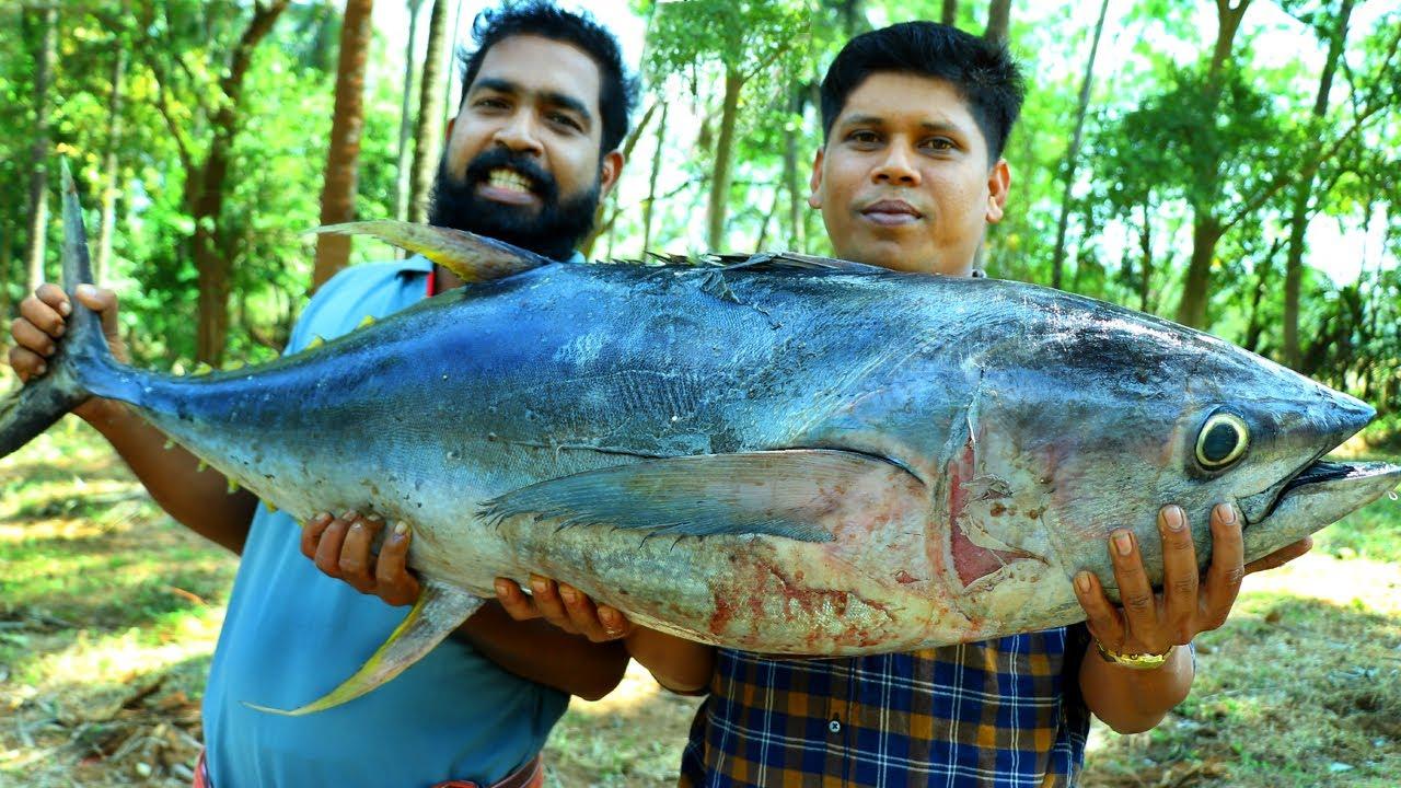 印度人如何吃金枪鱼你见过吗 ? 2条50公斤金枪鱼看看村民怎么吃!