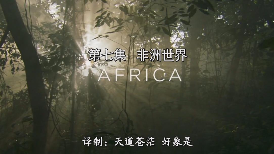 BBC非洲世界Africa.2019
