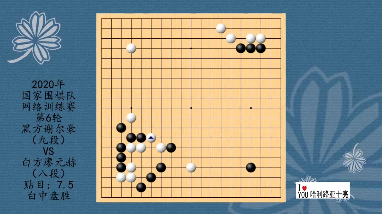 2020年国家围棋队网络训练赛第6轮,谢尔豪VS廖元赫,白中盘胜