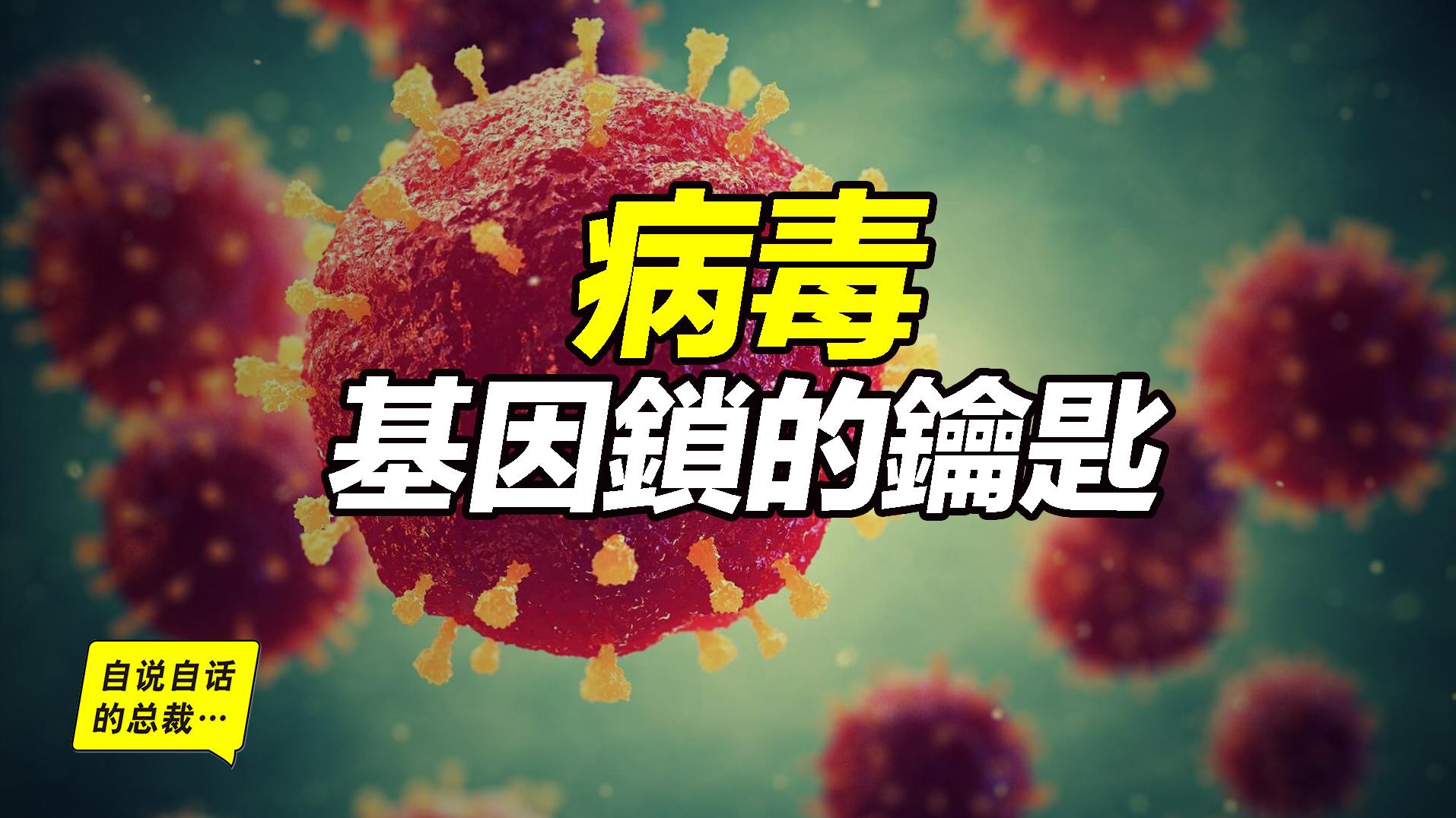 病毒,或许才是这个星球的主人