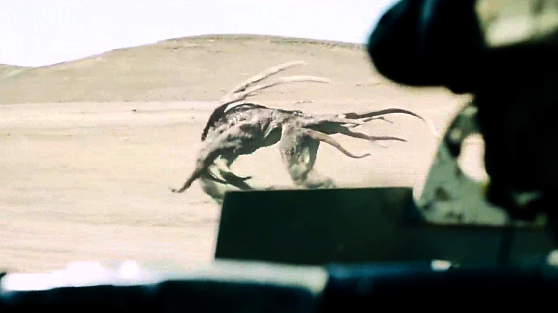 科幻片:外星孢子降落地球,产出可怕生物,即使开着坦克都慌!