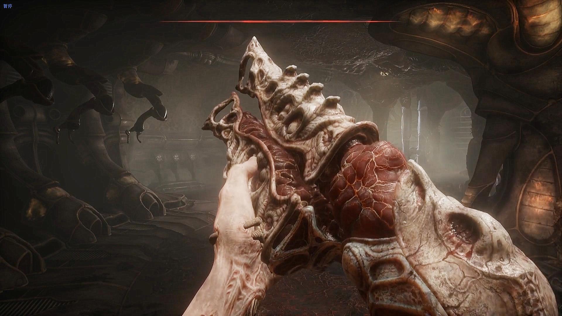 这堆血肉竟是你的枪?这到底是什么鬼游戏?
