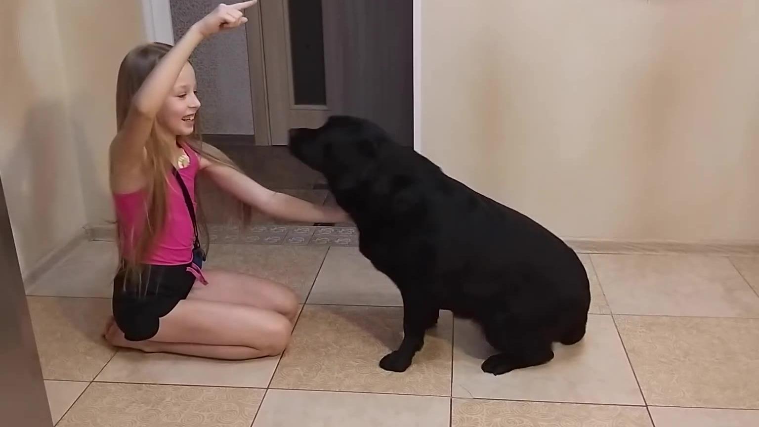 可爱俄罗斯女孩和宠物一起玩
