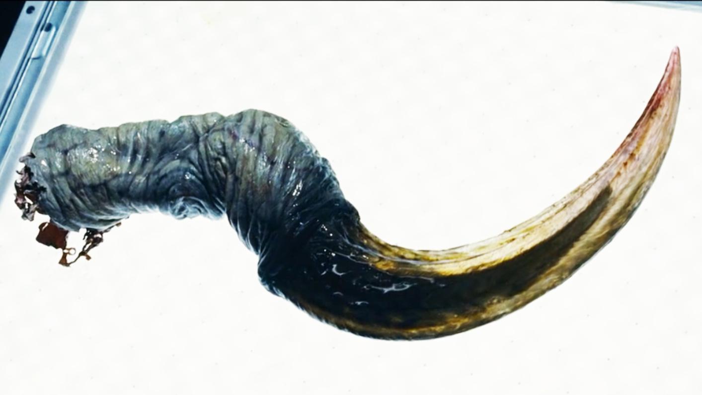科学家解剖怪兽残骸,不料放出了史前寄生虫,人类面临变异危机!
