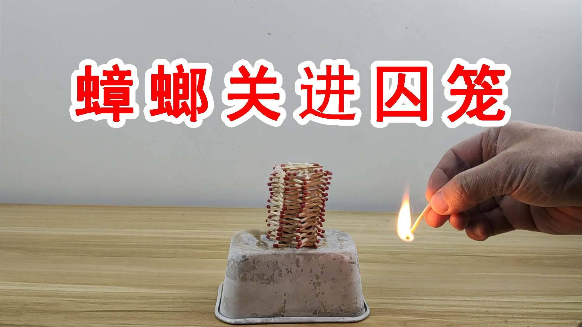把蟑螂关进用火柴做成的囚笼里,然后把火柴点燃!