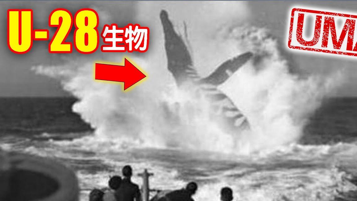 【UMA档案】U-28生物-一战时期德国潜艇遭遇不明巨大生物事件|未确认生物|超自然|古文明|外星人