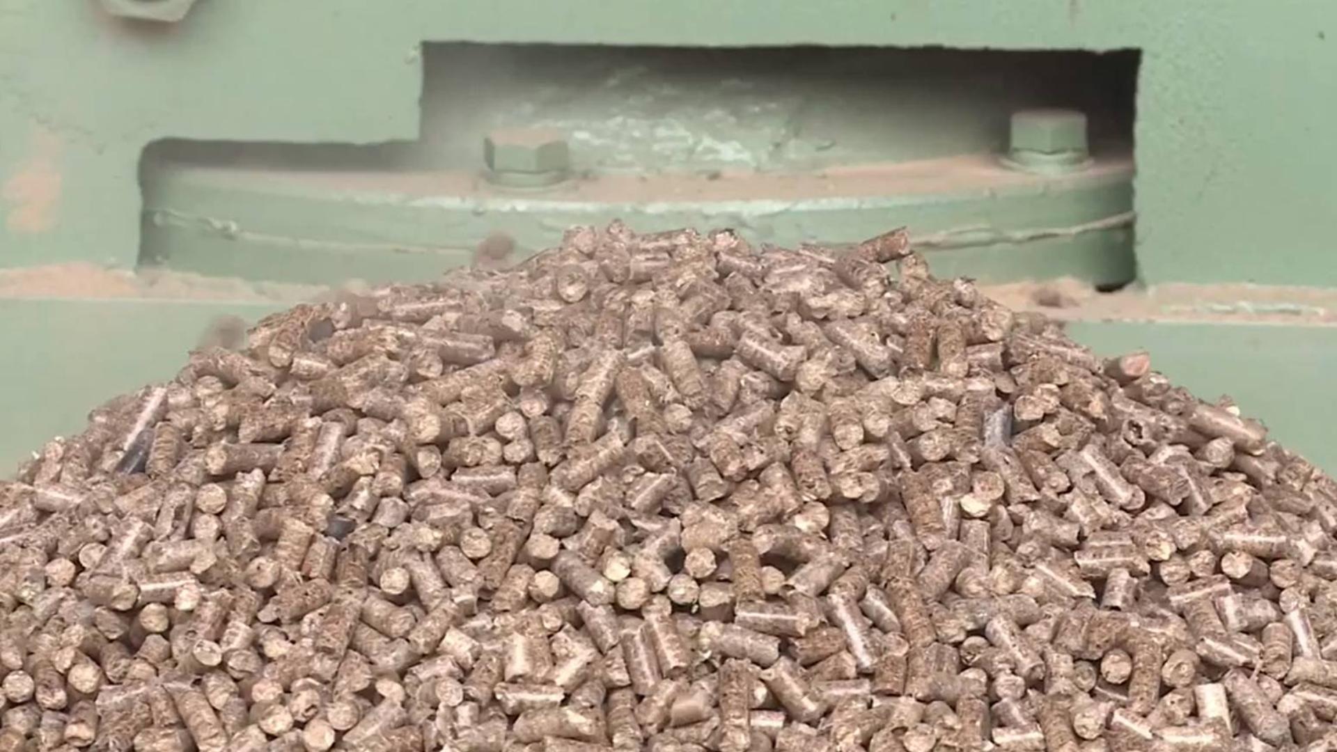 废木屑如何变燃料?小伙自造颗粒成型机,成功后1天加工20吨燃料