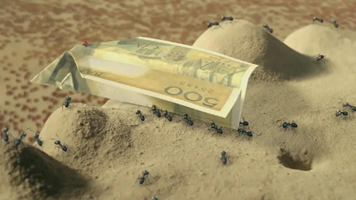 小蚂蚁捡到人类500块钱,折成纸飞机后,变成了战争的利器!